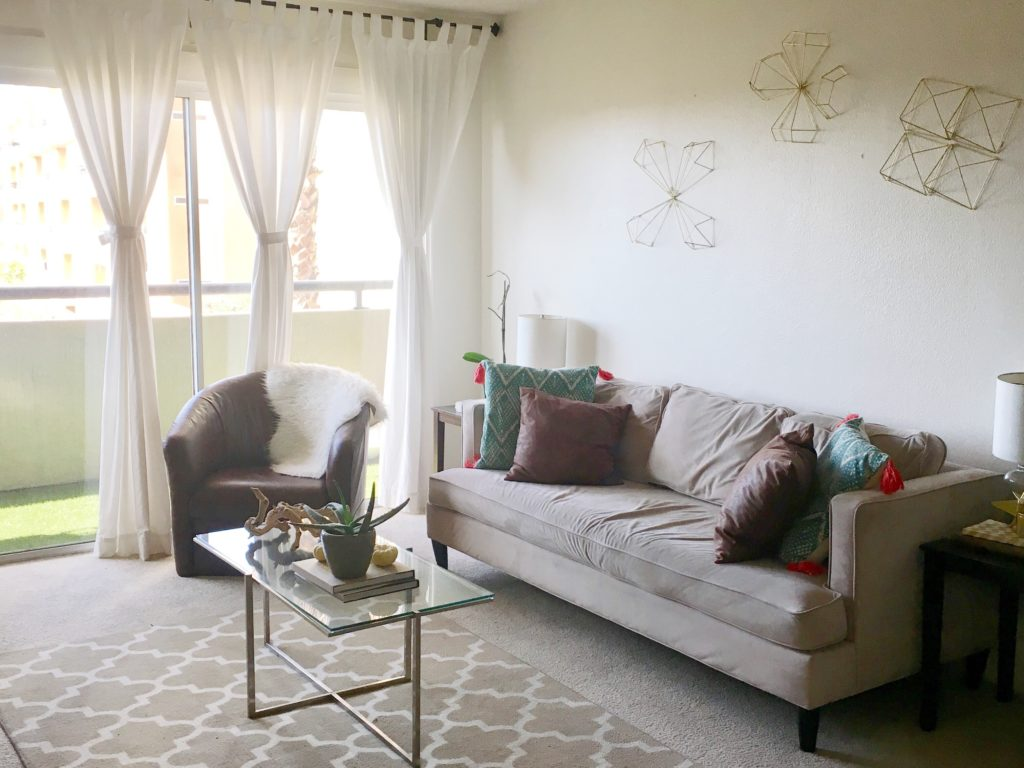 FullSizeRender 4 1024x768 - How to Decorate Your First Apartment