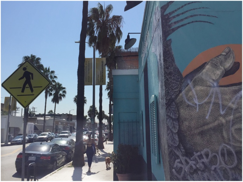 Main2 - Los Angeles Guide of Abbott Kinney