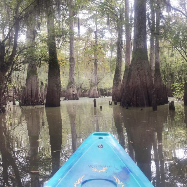Another way to explore New Orleans